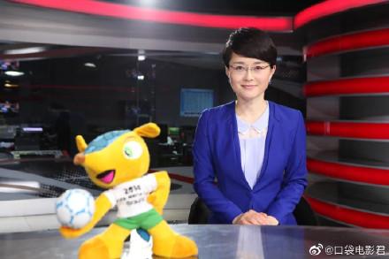 央视体育新闻女主持人_央视财经频道女主持_央视大胸女主持杨继红