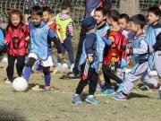 """新华社中国足球""""假洋教练""""调查:卖小面的美国人也做过青训"""