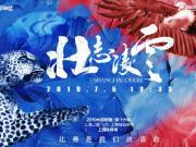 申花戰上港海報:壯志凌云,比賽是我們的宿命